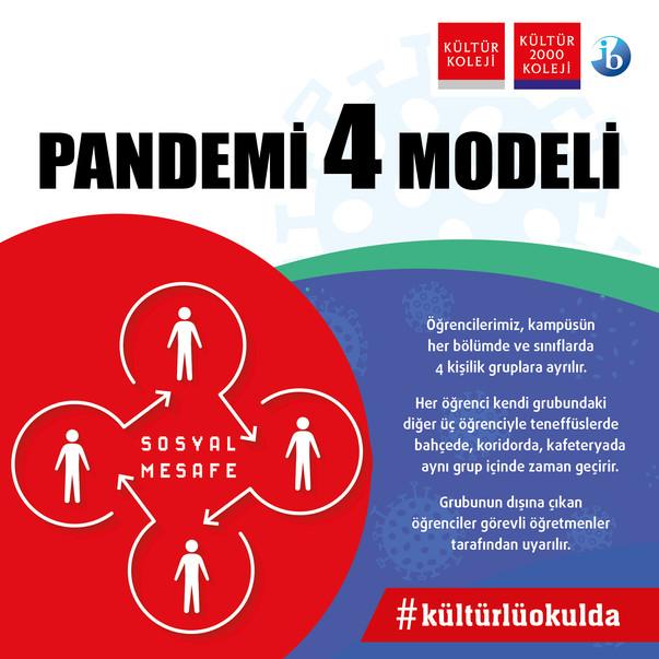 Pandemi 4 Modeli