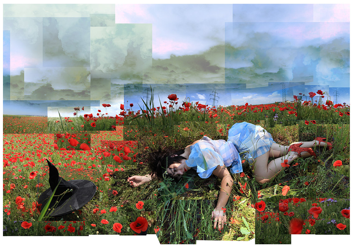 Dorothy, Wizard of Oz, Fairytales, wicked witch, heroin, poppy field, poppies, eternal sleep