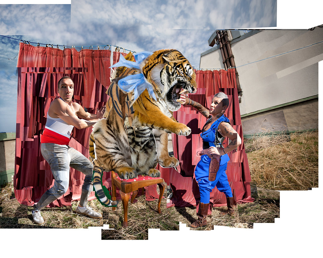 TigerSML.jpg