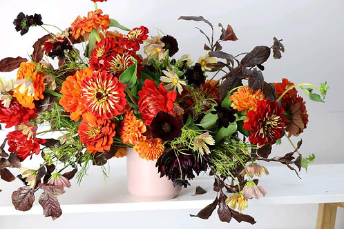 Spiced orange zinnia - Large Kit with Class