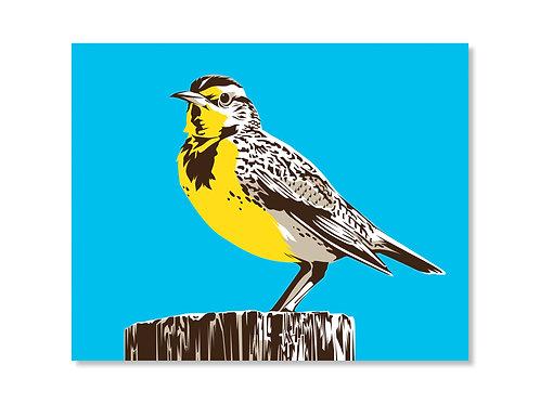 Western Meadowlark Print