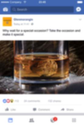 GM_Vignettes_Facebook-Feed-2017-A.jpg