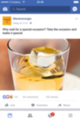 GM_Vignettes_Facebook-Feed2a-2017.jpg