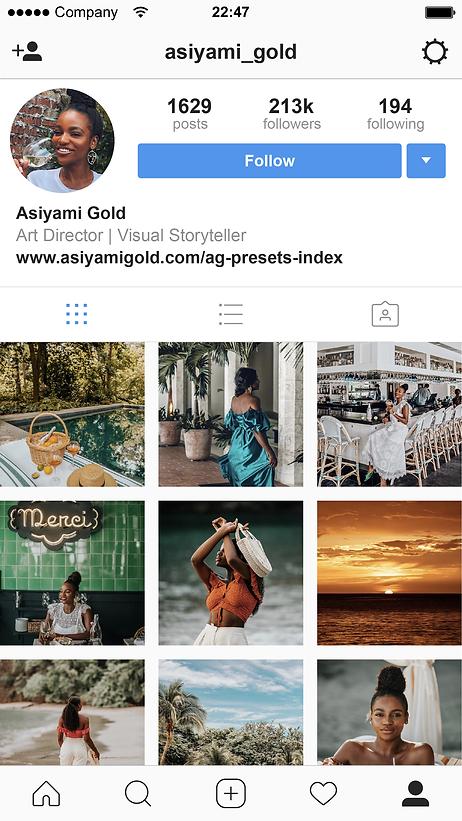 Influencer_Instagram-Profile-2017-2-01.p