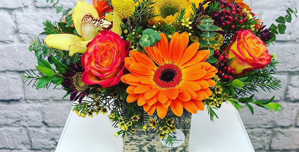 Goldy arrangement