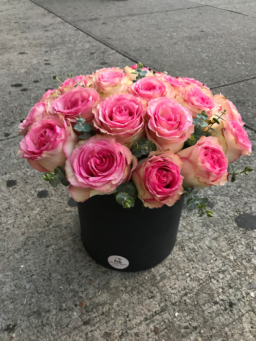 esperance pink box of rose
