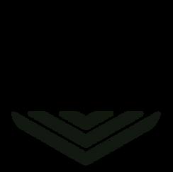 DVF Logo2.png