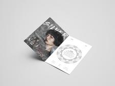 Archetype Booklet Spread - Silver