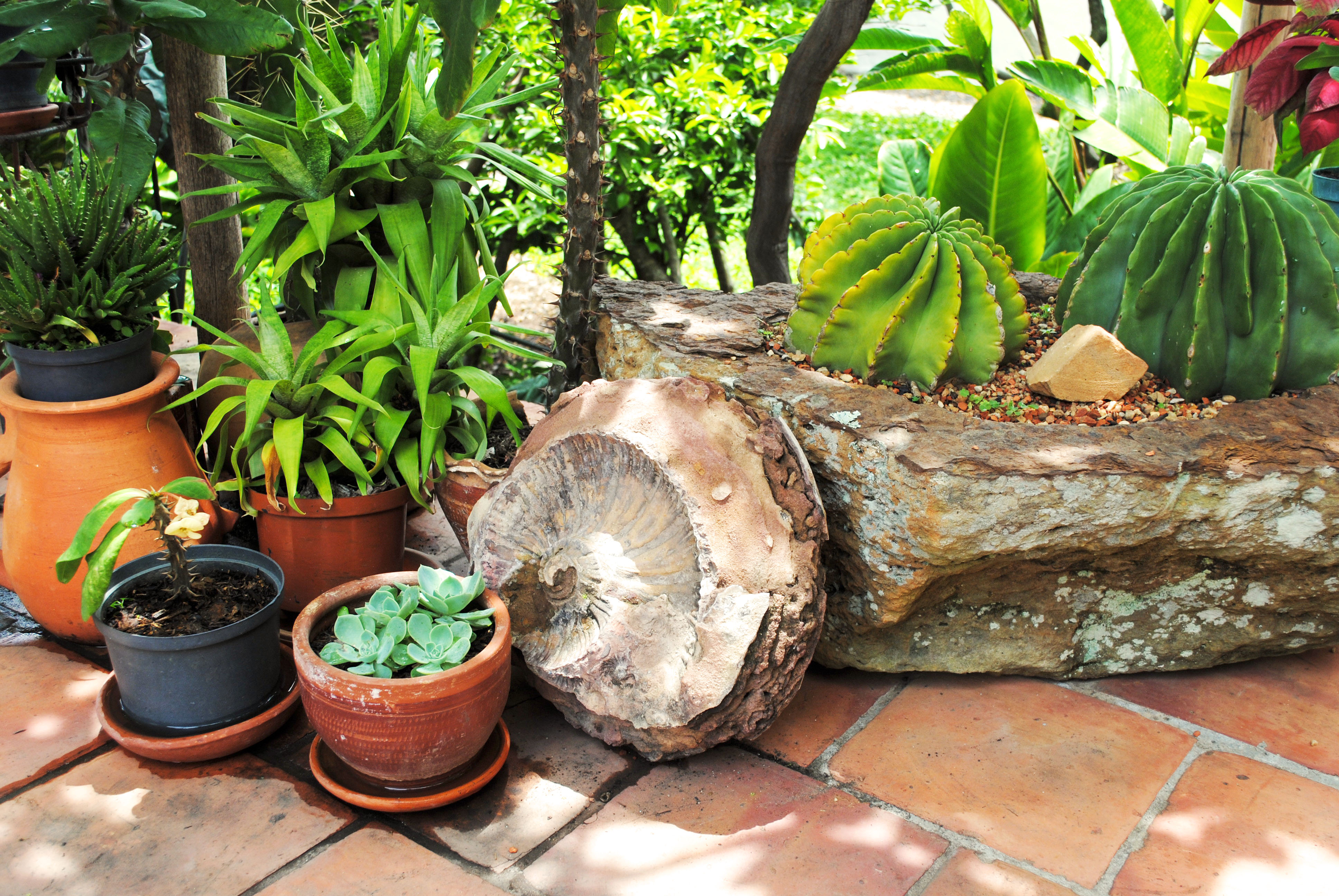 Detalle Jardín Barichara