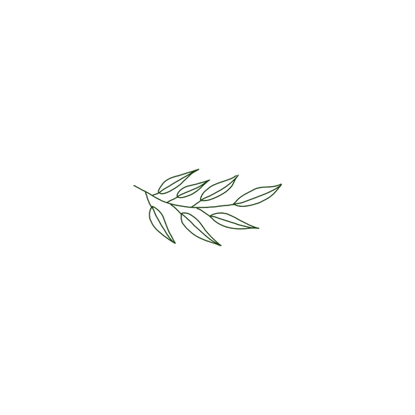 Cee Cee_Foliage_transparent_2.png