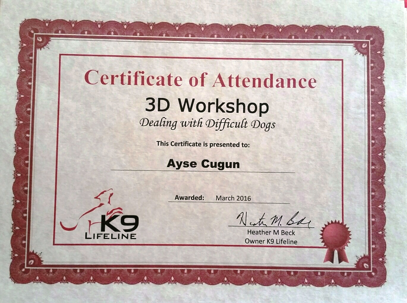 ayse 3d certificate