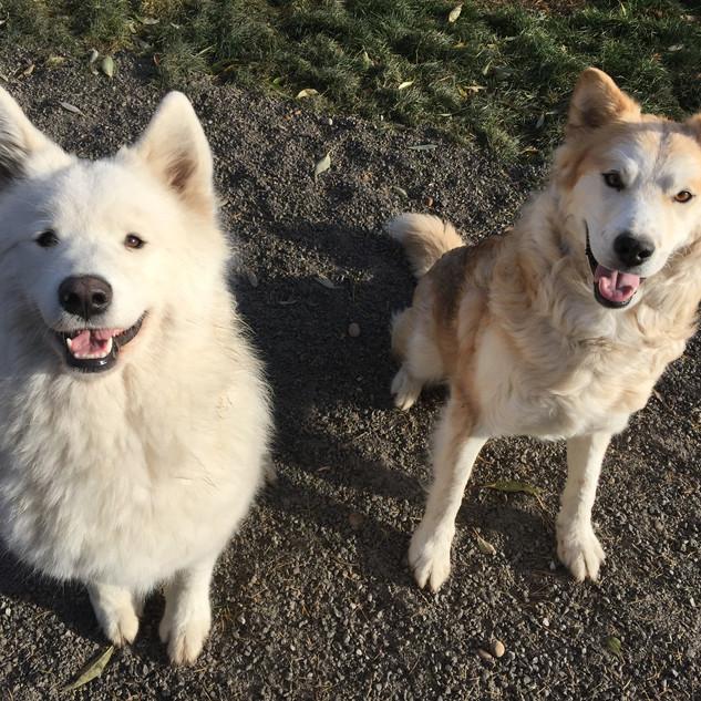 Kaia & Sulley