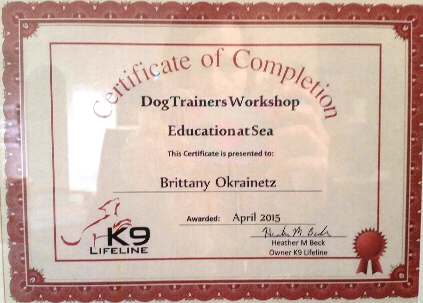 brittany o at sea certificate