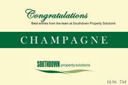 Southdown 20180207 (3)