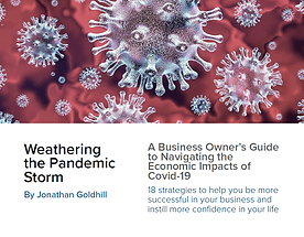 Business Owner Guide: Weathering the Pandemic Storm Ebook