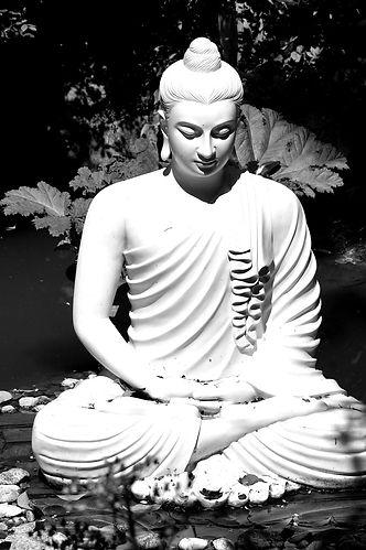buddha-4230059_1920_edited.jpg