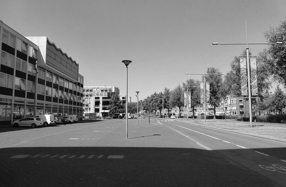 schil-west-dordrecht2-groot_edited_edite