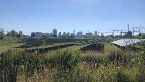 Eco-zonnepark 't Oor