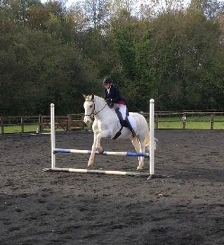 horse prix caprilli