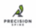 Precision Spine Logo
