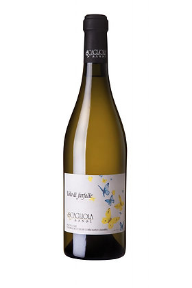 Weinflasche Moscato d'Asti Farfalle Piemont,