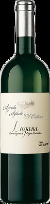 Weinflasche Weisswein Zenato Lugana Santa Cristina,