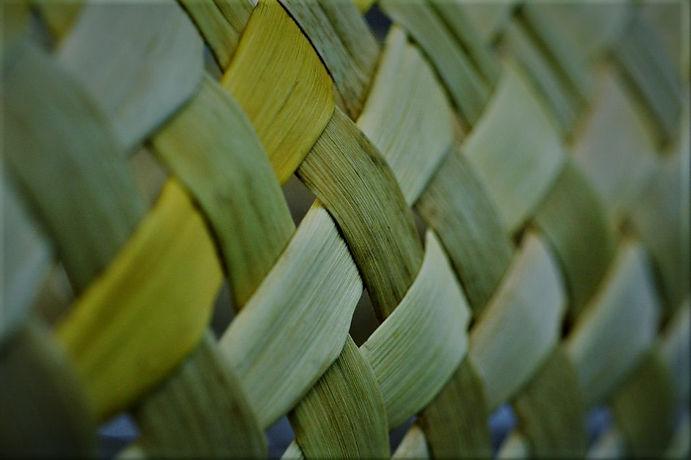 new-zealand-maori-flax-weaving-kete_DPC_
