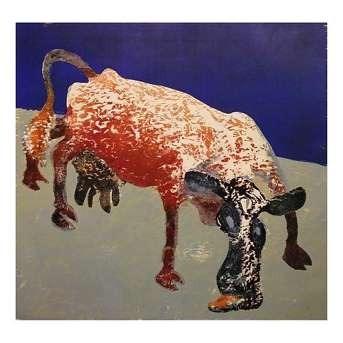 Kubildet rødt - Ståle Blæsterdalen