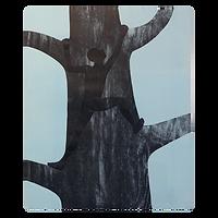 Klatreren II - Trine Lindheim