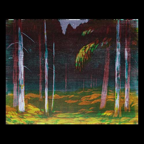Skog - Knut Frøysaa