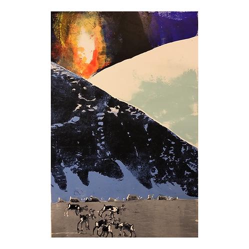 Dyr mot vinter - Ståle Blæsterdalen