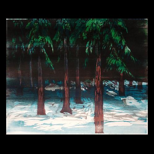 Vinterskog - Knut Frøysaa