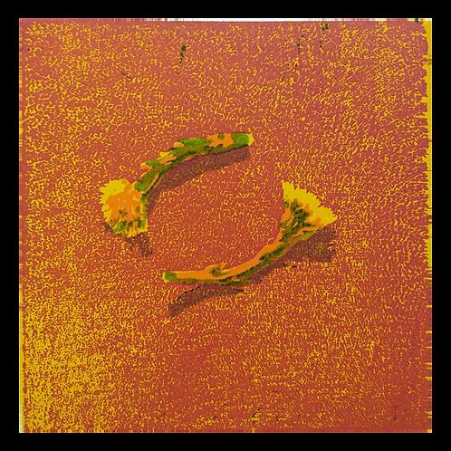 Tussilago XXIV - Tor-Arne Moen