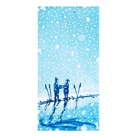 Forlovelse i snø - Kristian Finborud