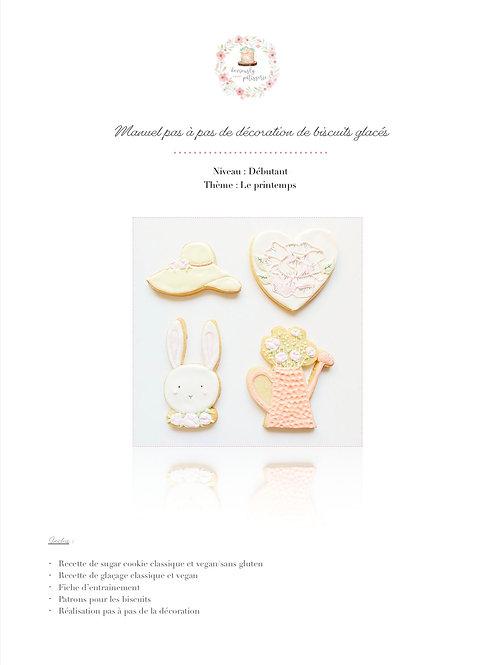 Livret de décoration de biscuits sur le printemps - Niveau débutant