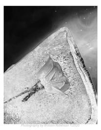 Rose in Ice, Crab Nebula