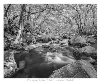 Stream, Blue Ridge