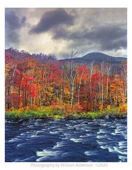 Ausable River #3