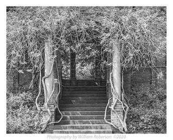 Portal, Vanderbilt