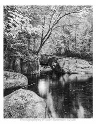 Racquette River #3
