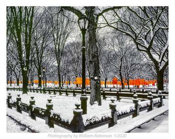 Gates, Central Park