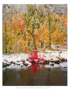 Early Snow, Ausable River