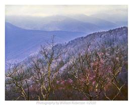 Blue Ridge #2