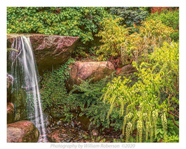 Waterfall, BBG
