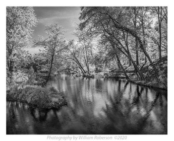 Pond, Biltmore