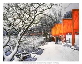 Gates, Central Park#2