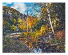 West River Trail, Ausable #5