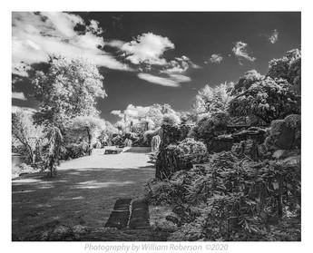 Innisfree Gardens #9
