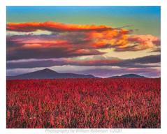 Sunset, Norman Ridge #2
