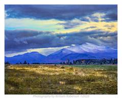 Plains of Abraham #2